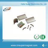 Fornitore dei magneti di segmento dell'arco del neodimio