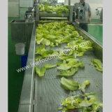 L'ozone Machine à laver des fruits et légumes
