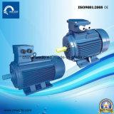 電気モーター非同期モーター鋳鉄三相Y2シリーズ