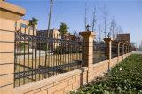Rete fissa residenziale 3-2 del giardino di obbligazione nera decorativa elegante di alta qualità