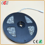 5050 60LED RVB Strip Light LED 12 V Cordon LED