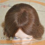 Parrucca ebrea dei capelli brasiliani di colore del Brown (PPG-l-0184)