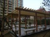 Composé en plastique en bois de la cavité WPC d'étage en plastique en bois extérieur neuf de Decking