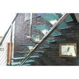 El pasamano de la escalera del acero inoxidable diseña comercio del vidrio de la escalera