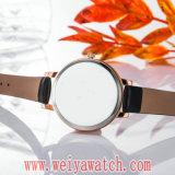 Orologio casuale del fornitore delle signore del quarzo di modo (Wy-17030B)