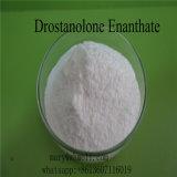 Trasporto sicuro di Drostanolone Enanthate Anbolic degli steroidi dell'ormone grezzo della polvere