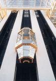 2018 Lmr Turismo ascensor con Cabina de acero inoxidable