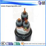 XLPE 절연제 PVC 칼집 방패 조종 케이블