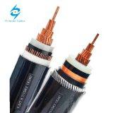 Sans halogènes N2XCH les câbles de puissance avec conducteur concentrique