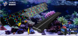 Intelligenter Entwurf 2017 SelbstDimmable LED Aquarium-Korallen-Licht