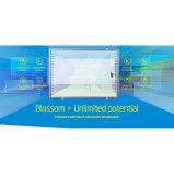 Grande formato Whiteboard interattivo infrarosso IR Iwb