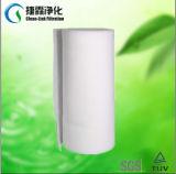 Filtri primari dalla presa d'aria pre (C36-400)