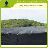 Intimité noire de 100% clôturant le réseau, réseau en plastique de frontière de sécurité de jardin de coupe-vent