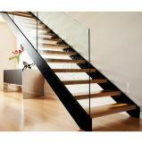Escalera de madera de los pasos de progresión del pasamano de cristal de madera moderno de la barandilla