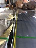 De Bladen van het roestvrij staal in Industrie van het Voedsel, Elektrisch apparaat, het Werktuig van de Keuken, Decoratie worden gebruikt die