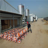 Qingdao Hapy uma construção da exploração avícola do batente