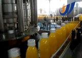 Taste 500L/H Mango Juice Production Line