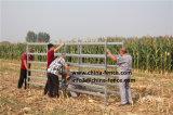 Торговли Assurance квадратные овальные круглые трубы крупного рогатого скота в топливораспределительной рампе Ограждения панели