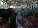 Berufsfischen-Hilfsmittel-rundes Fischernetz