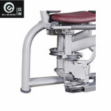 De speld Geladen Apparatuur van de Geschiktheid van de Gymnastiek van de Machine Sm8023 van de Aanhaling van de Heup