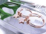 Zircon-Steinkristallstern-Form für Frauen-Valentinstag-Geschenk-Band-Ohrringe