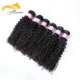 Aucun cheveu brésilien de vison de cheveu de Chamical de vente en gros normale de prolonge