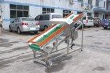 De plastic Detector van het Metaal voor KringloopIndustrie