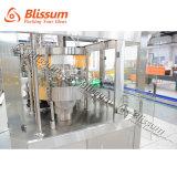 Terminar a produção da cerveja e a linha de embalagem para o frasco de vidro