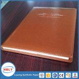 Het antibacteriële Notitieboekje van het Document van de Steen