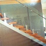 Het openlucht Systeem van de Balustrades van het Glas Frameless met Goedkope Prijs