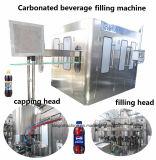 Komplettes Systems-Fruchtsaft-und Gemüse-Getränk-Getränk, das füllenden verpackenproduktionszweig für GlasBottle&Plastic Flasche aufbereitet