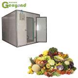 A unidade de refrigeração aquecimento frio Gyc um painel congelados de congelamento do Motor do Ventilador da Porta de congelador Compressor Bloquear Preço de quarto para frutas e produtos hortícolas frescos peixes de carne