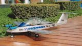 CRI-CRI 電気 R/C モデル飛行機