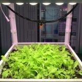Maior eficiência na utilização da luz crescer faixa luminosa