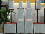 Doppeltes 15 Zoll angeschaltenes Stadiums-Monitor-Lautsprecher-Audiosystem (TK25)