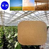 Pure source végétale de la poudre d'acides aminés 12-0-0 70 % des acides aminés