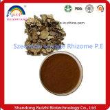 Rizoma superiore P.E., 4:1 dell'estratto di Rhizoma Chuanxiong, 10:1, 20:1 del sedano di montagna di Szechwan