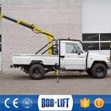 Mini grue mobile de camion à vendre