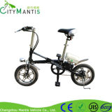 Bateria de lítio Motocicleta E-Bike Yztd-16 Electric Bike