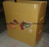 PP polypropylène Carton en plastique de fruits et légumes du Coroplast case Fabricant/zone de pliage