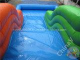 Trasparenze di acqua gonfiabili del polipo/trasparenza gonfiabile con il raggruppamento