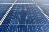 セリウムTUVが付いている240-270W多結晶性シリコーンの太陽電池パネルは承認した