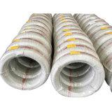 Saip acabó la bobina del alambre de acero (SAE1006) para hacer los sujetadores