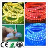 두 배 줄 LED 지구 빛 RGB 옥외 LED 리본 110V/220V
