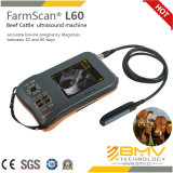 Farmscan L60 Palmtop beweglicher Digital Ultraschall-Scanner