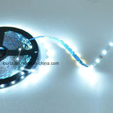 S-forme de 12V 60LED SMD2835/M Strip Light LED souples