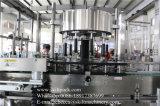 Máquina de etiquetado rotatoria de las caras automáticas de la botella dos de Skilt