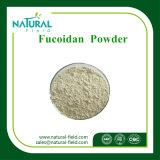 自然な補足10%-90%の海藻エキスの粉12年のを使って経験のFucoidan
