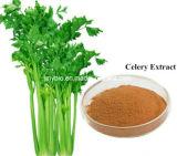 セロリの葉のエキスの5:1 ~20: 1つのアピゲニン1.2%~5%