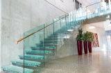 Escalera modificada para requisitos particulares manera del vidrio de flotación de la escalera